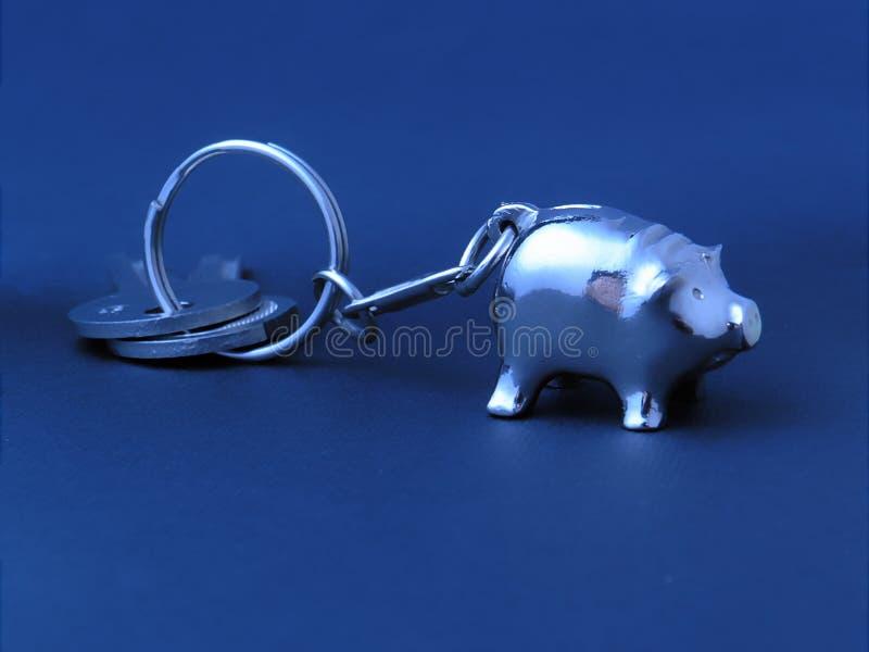 klucz do świni etykiety obrazy stock
