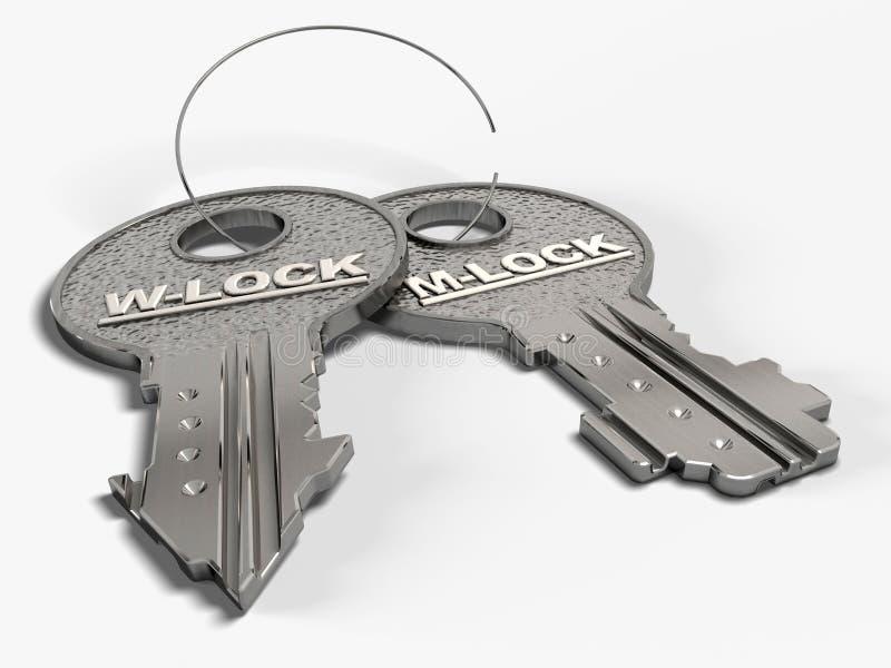 klucz do miłości ilustracji