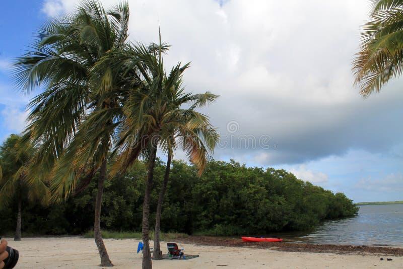 Kluczowa Largo plaża przy John Pennekamp parkiem zdjęcie royalty free