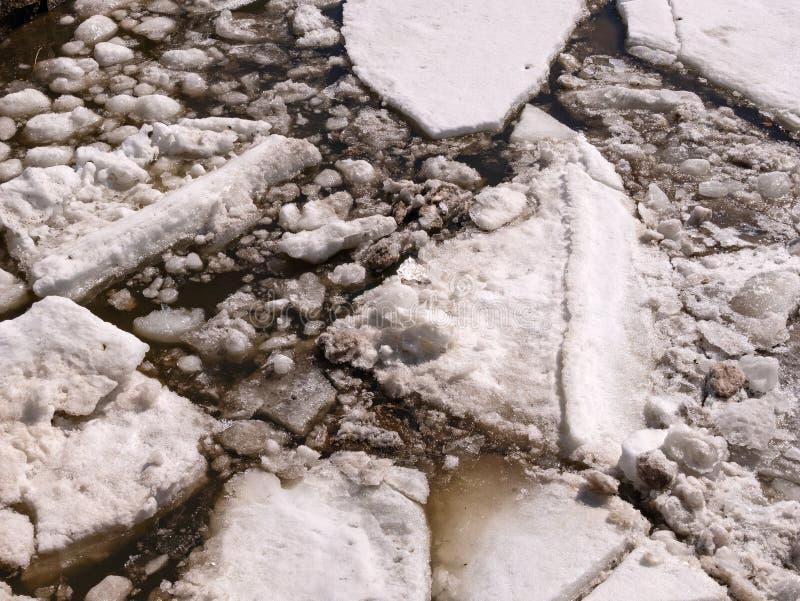 Klumpen des Eises groß und kleines Auseinanderfallen im Brackwasser im Vorfrühling auf einem Fluss in Maine lizenzfreies stockbild