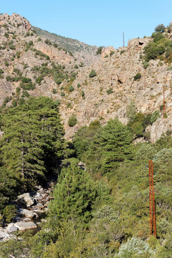 Klyfta av den Asco floden i Korsika berg arkivfoto