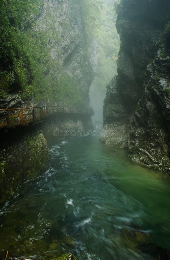 klyfta vintgar slovenia royaltyfri foto