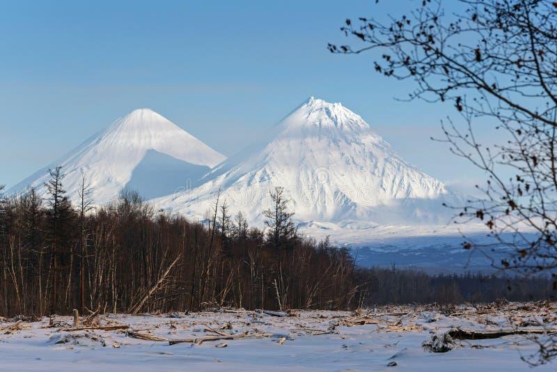 Klyuchevskoy vulkan och Kamen Volcano på den Kamchatka halvön royaltyfri foto