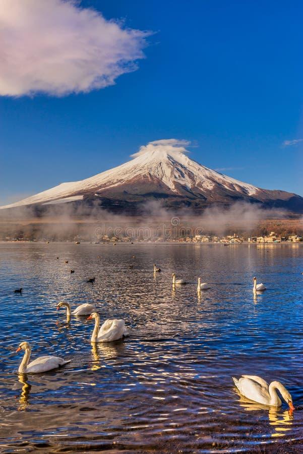 100km góry Fuji Japonii uwagi na zachodniej zimy Tokio obraz royalty free
