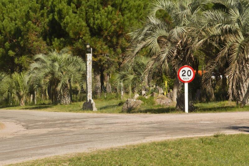 Km/h de signe de limitation de vitesse, route et paumes photos stock