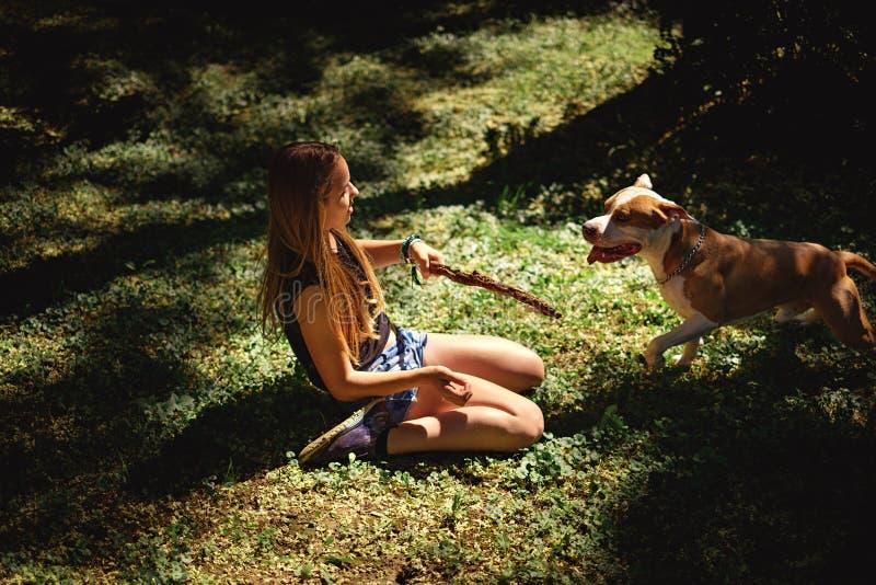Knäfalla flicka som rymmer en pinne för hennes hund royaltyfria bilder
