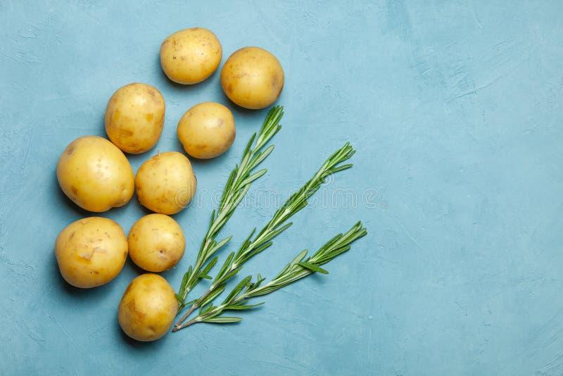 Knölar för rå potatis med rosmarin på blå bakgrund arkivbild