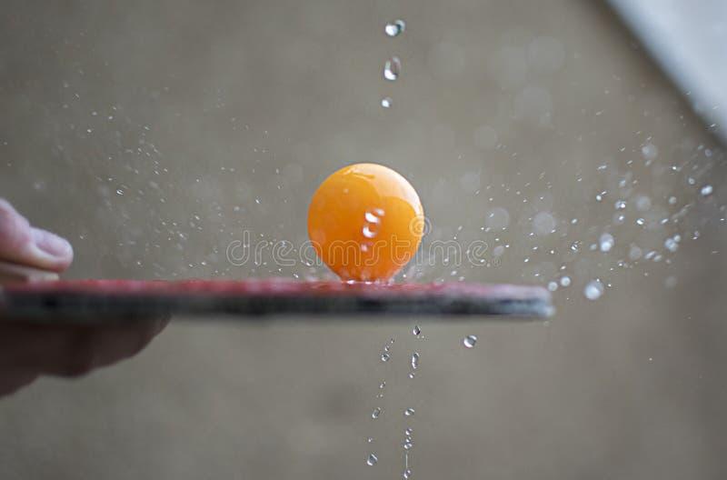 Knacka pongracket som slår en boll Rörelsehandlingbegrepp av bordtennissporten royaltyfria foton