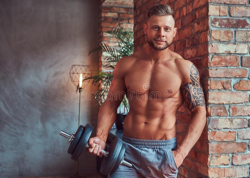Knap gebaard mannetje met modieus haar en tatoegering op zijn wapen, shirtless in borrels, die met domoren, status stellen royalty-vrije stock foto
