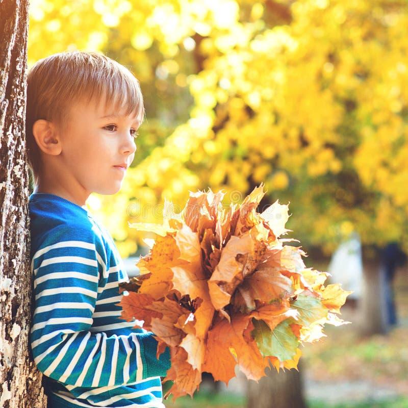 Knap weinig bos van de jongensholding van esdoornbladeren De manier van de herfstjonge geitjes Gelukkige en gezondheidskinderjare stock afbeelding
