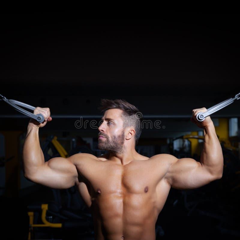 Knappe gebaarde bodybuilding mens stock afbeeldingen
