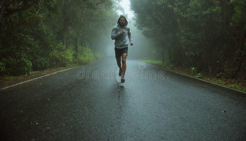 Knappe jogger die in het exotische gebied lopen stock foto's