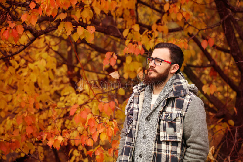 Knappe jonge mens Autumn Portrait stock foto
