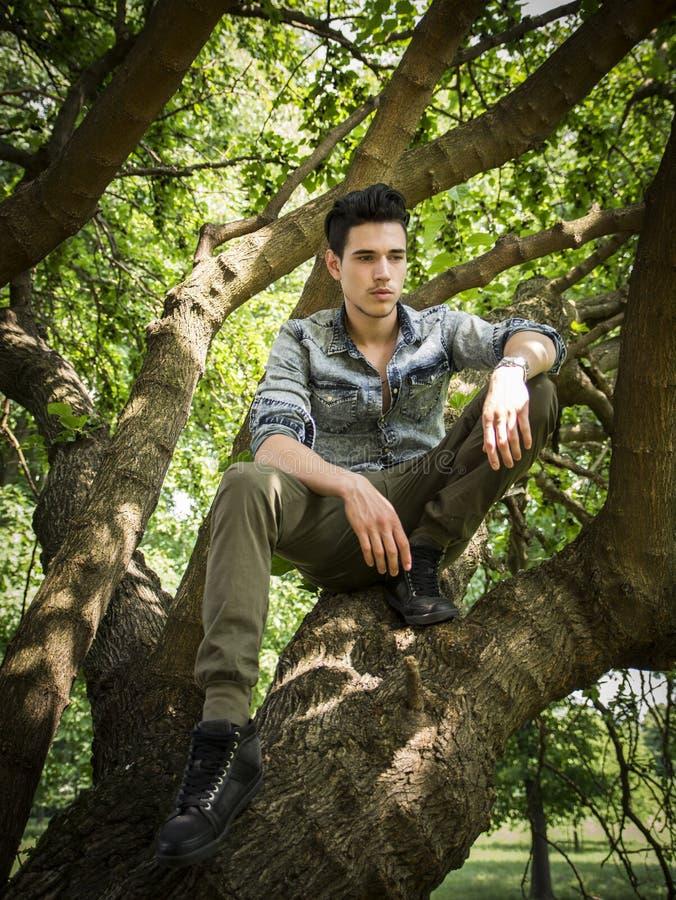 Knappe jonge mensenzitting op boomtakken royalty-vrije stock foto's