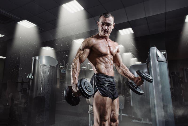 Knappe machts atletische bodybuilder in opleiding omhoog pompend spieren royalty-vrije stock afbeeldingen
