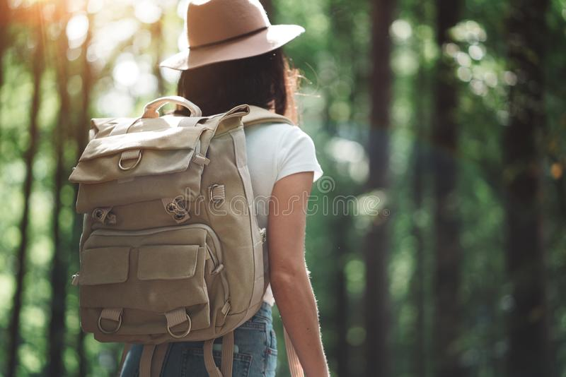 Knappe reizigersvrouw met rugzak en hoed die zich in het bos Jonge hipstermeisje lopen onder bomen op zonsondergang bevinden stock foto