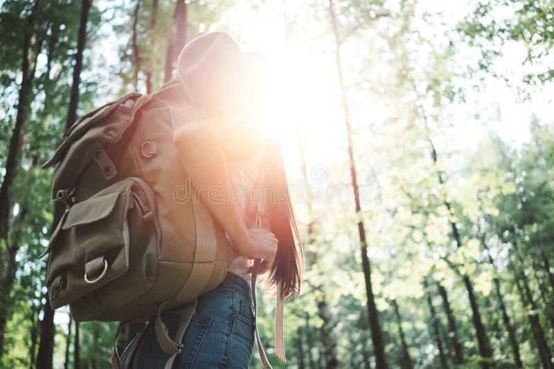 Knappe reizigersvrouw met rugzak en hoed die zich in het bos Jonge hipstermeisje lopen onder bomen op zonsondergang bevinden royalty-vrije stock foto's