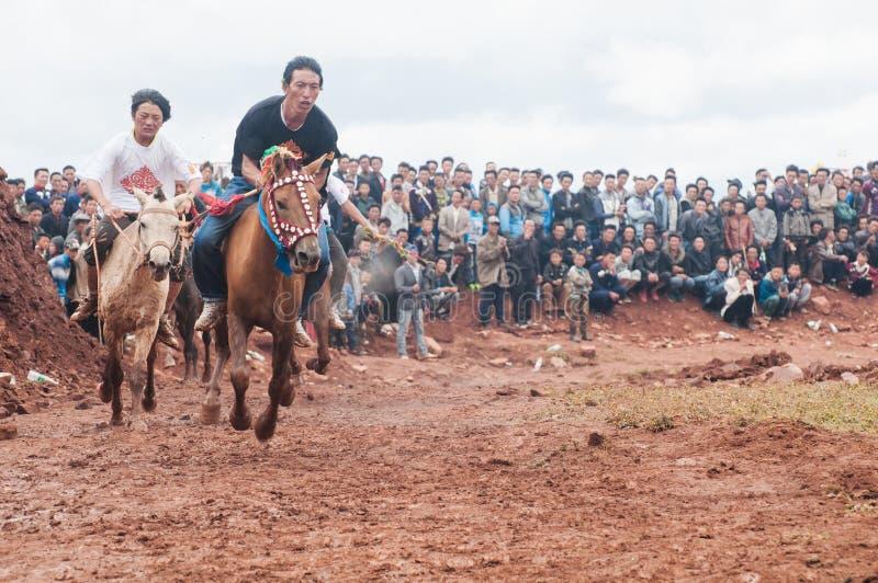 Knappe Ruiter in Paardenrennen stock afbeelding