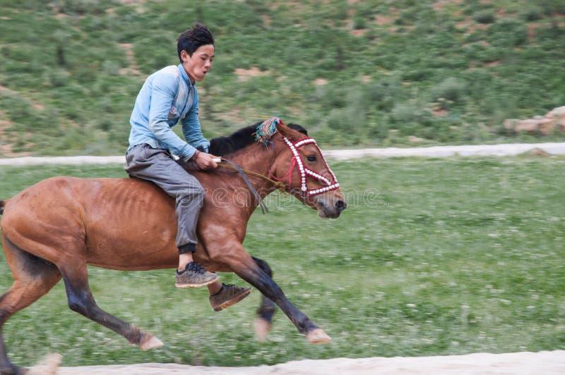 Knappe Ruiter in Paardenrennen stock afbeeldingen