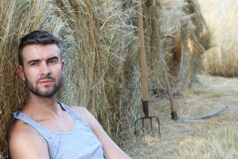 Knappe sexy jonge cowboy naast de landbouw van hulpmiddelen die op hooi met exemplaarruimte zitten stock afbeelding