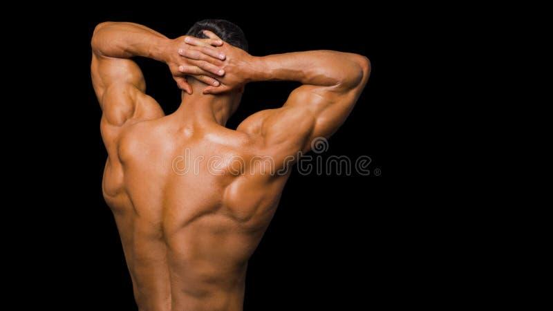 Knappe terug gedraaide machts atletische mens Geïsoleerdn over zwarte achtergrond Sterke bodybuilder met schouders, bicepsen royalty-vrije stock fotografie