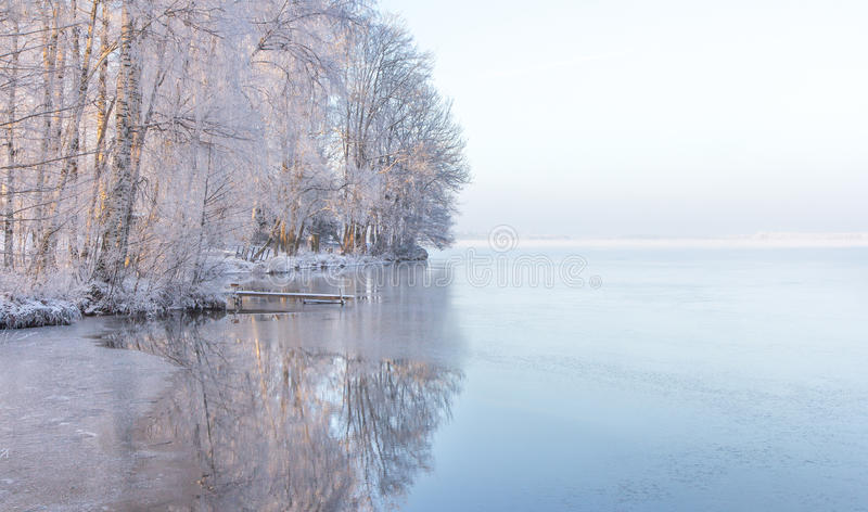 Knaprig vintermorgon i Estland royaltyfri fotografi