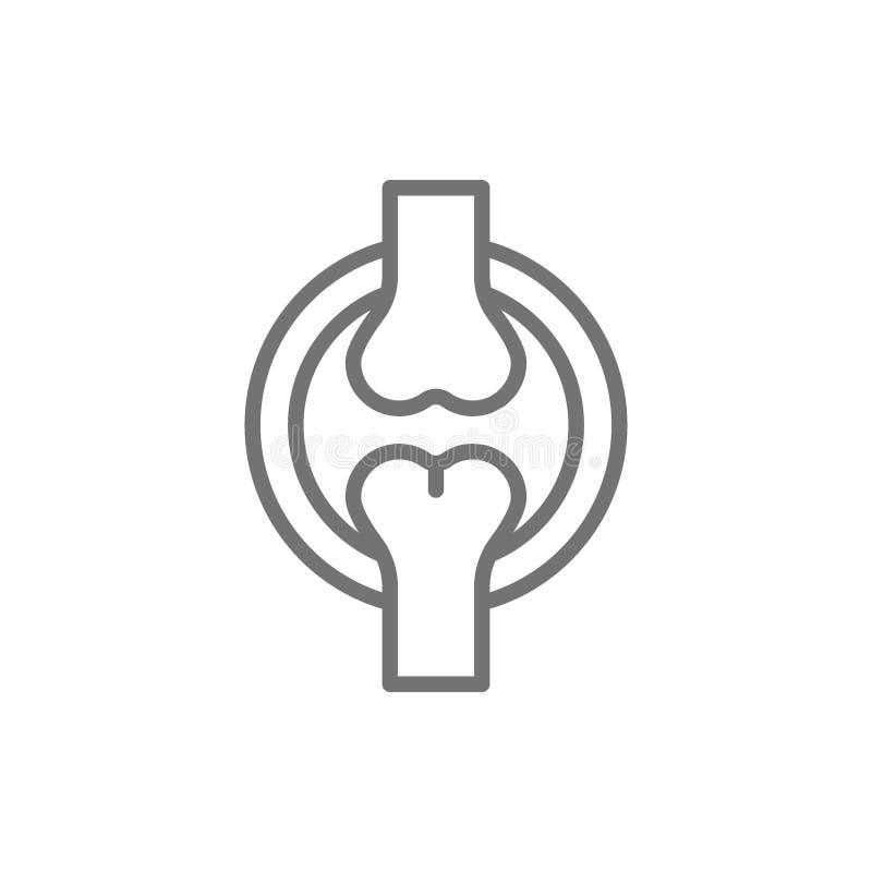 Knee joint, bones line icon. royalty free illustration