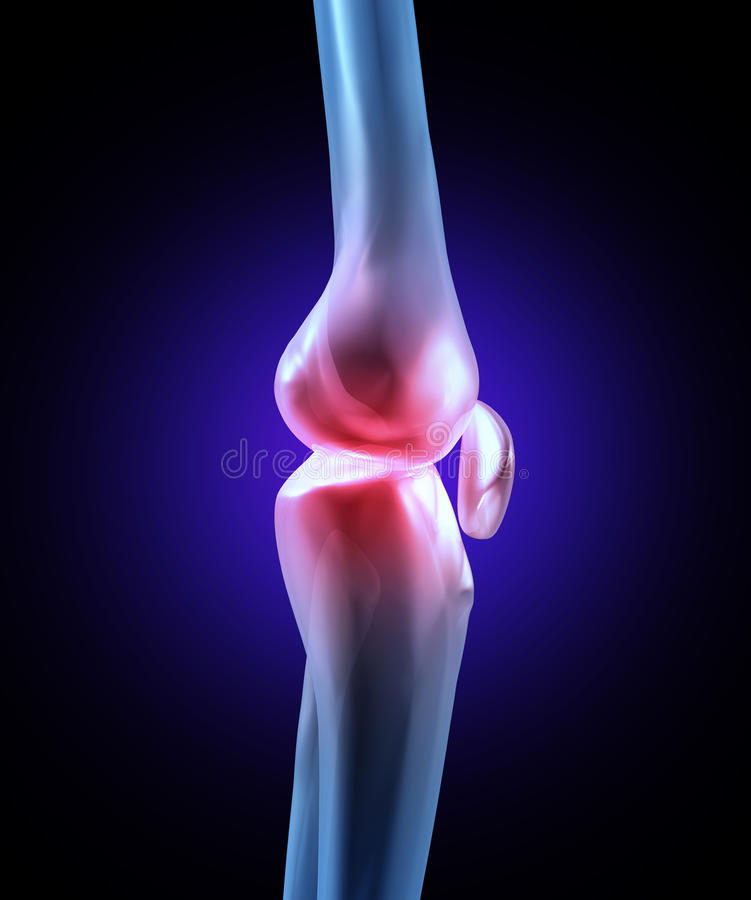 Knee Joint Pain royalty free illustration