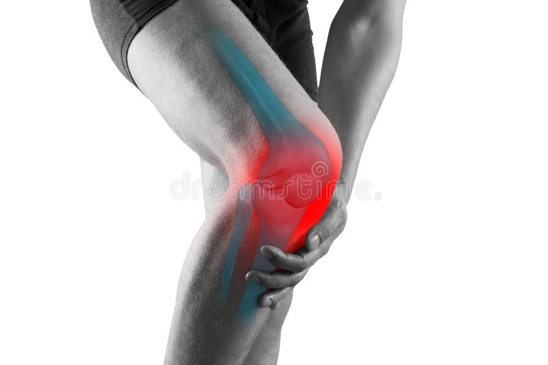 Knee pain, man with legs ache, chiropractic treatments concept, isolated on white background. Knee pain, man with legs ache, chiropractic treatments concept with royalty free stock images