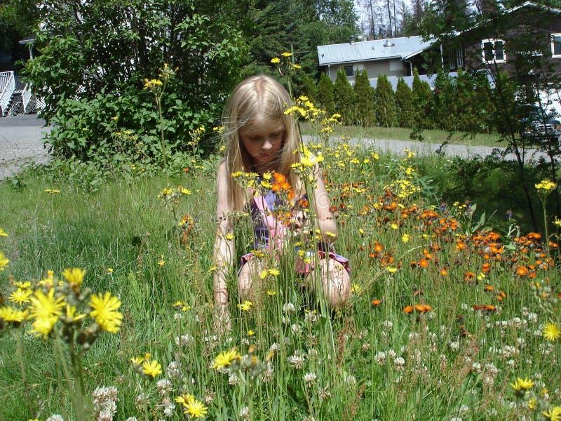 Kneeing in de wilde bloemen royalty-vrije stock afbeeldingen