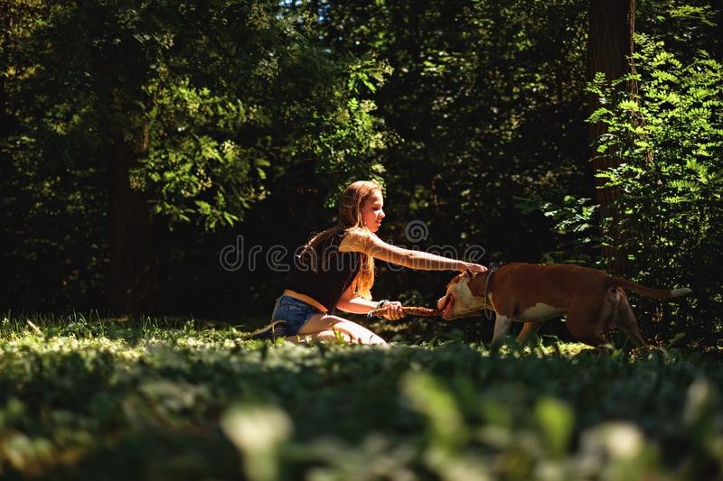 Kneeling girl petting her dog in the park royalty free stock image