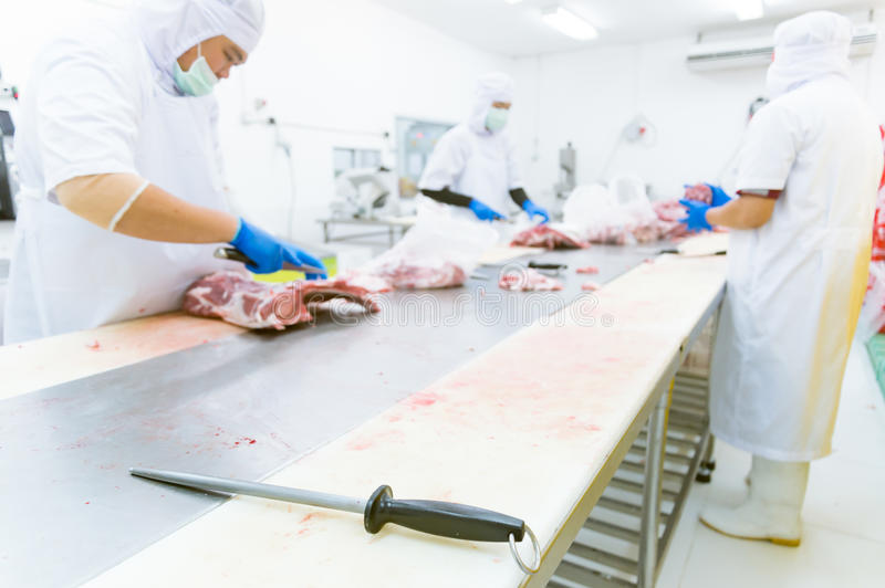 Knife sharpener with a black handle in meat factory. Knife sharpener with a black handle and Worker cuts meat butcher in meat industry stock image