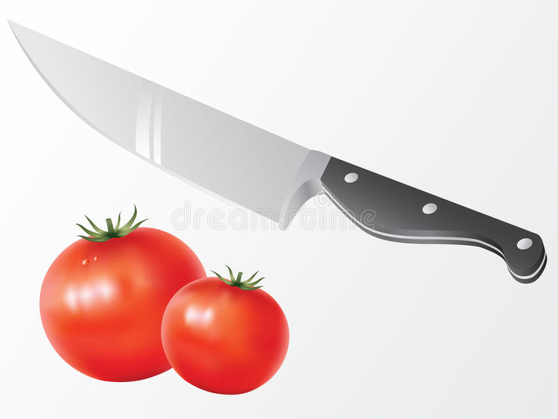 Download Knife and tomato vector stock vector. Image of meal, image - 11195069
