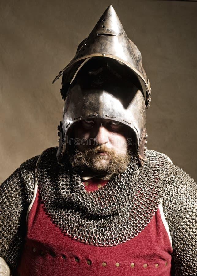 Knight royalty free stock photos