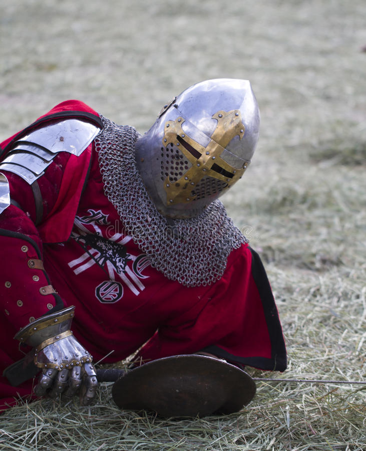 Download Knight Stock Photography - Image: 26828112