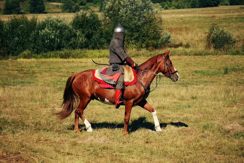 The knight. Medieval armored equestrian soldier with lance. Rider on horse is in the field royalty free stock image