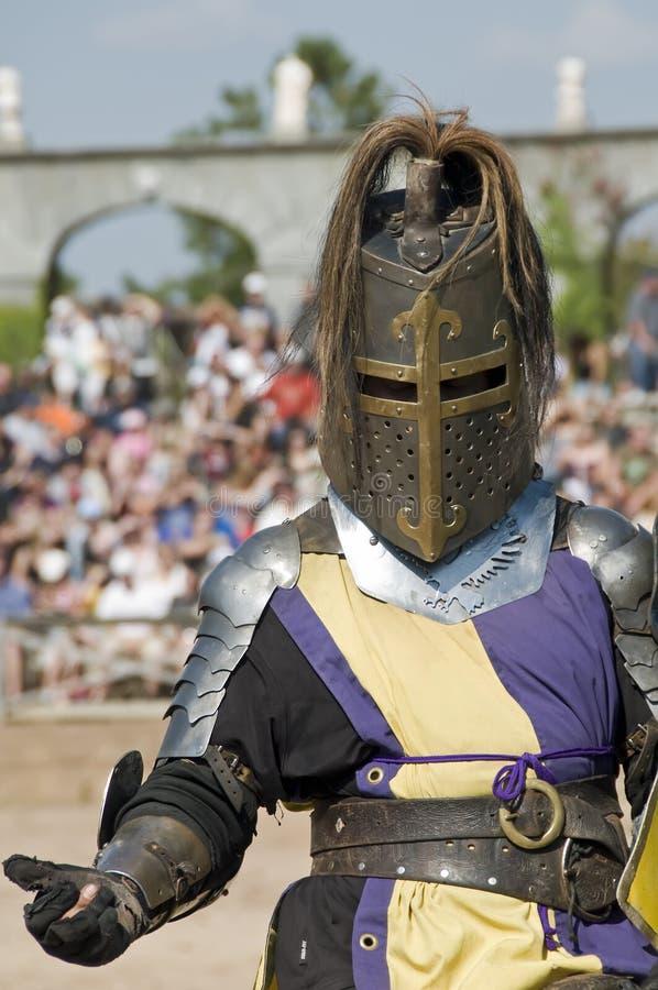 knight2 免版税库存照片