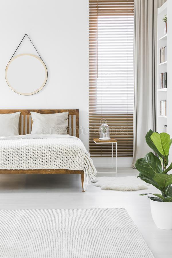 Knit blanket placed on wooden double bed in bright bedroom inter. Ior with empty round mirror on the wall, window with blinds and green plant stock photo