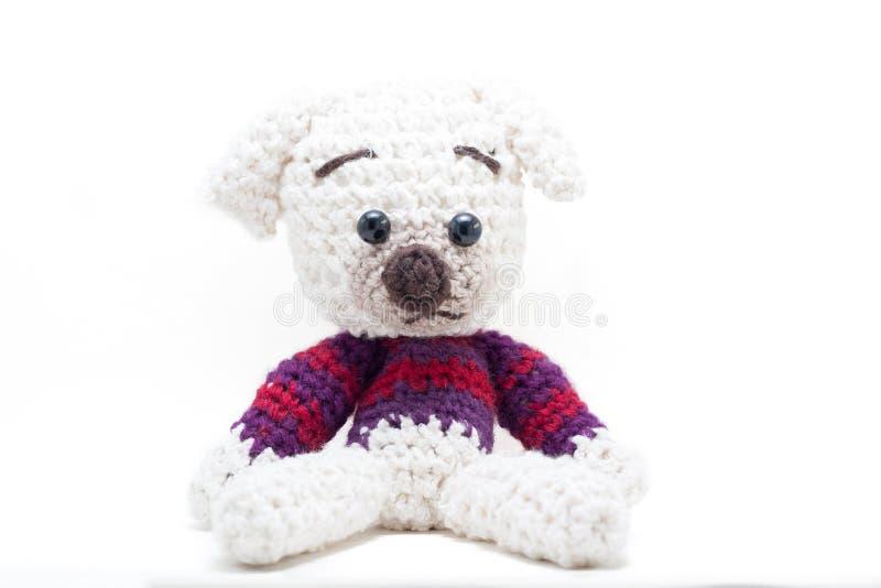 Knitted encheu o cão fotos de stock royalty free