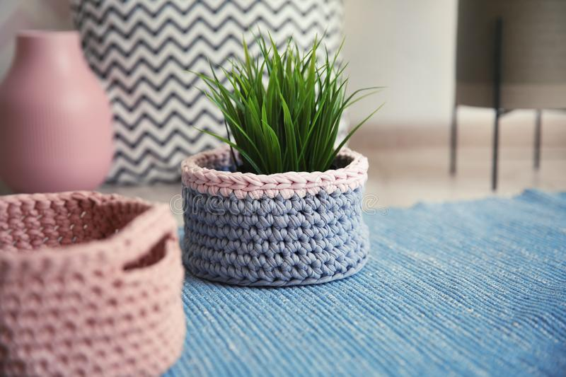 Knitted flowerpot cover with plant on carpet stock photo