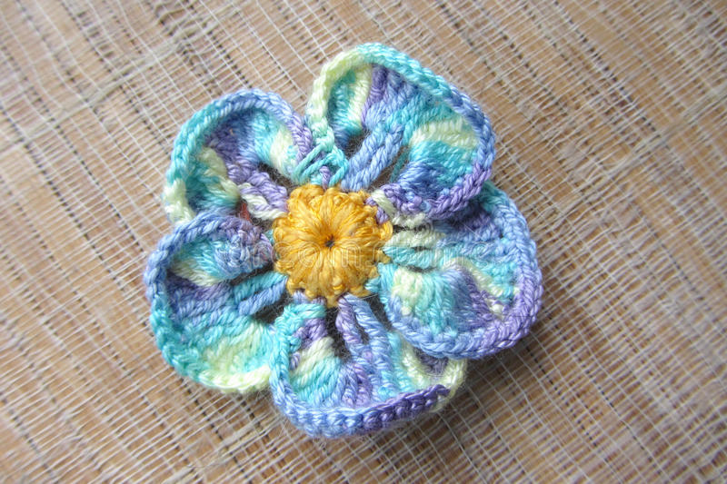 Knitted lavora all'uncinetto mi fiorisce dimenticare-con il filato delle mélange del cotone immagine stock