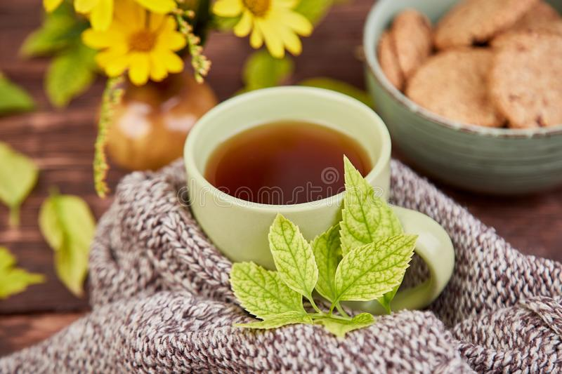 Knitted scarf with warm cup of tea. And cookies, autumn leaves on wooden table. Autumn. Fall season. Still life royalty free stock images