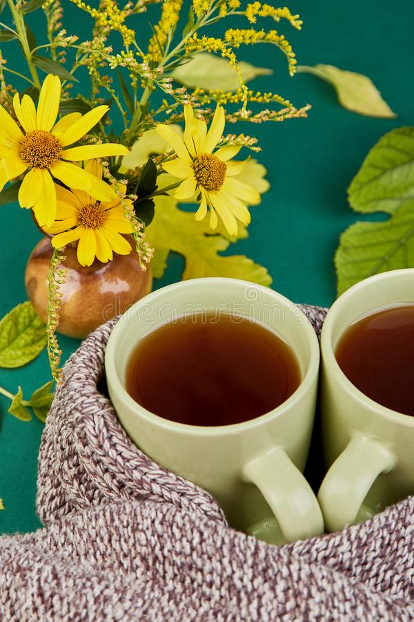 Knitted scarf with warm cup of tea. Knitted scarf with two warm cups of tea, autumn leaves on green background, Autumn. Fall season. Still life stock photo