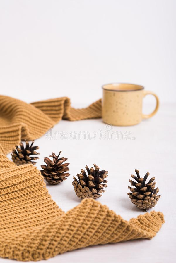 Knitted shawl, cup of coffee and cones on white background stock photography
