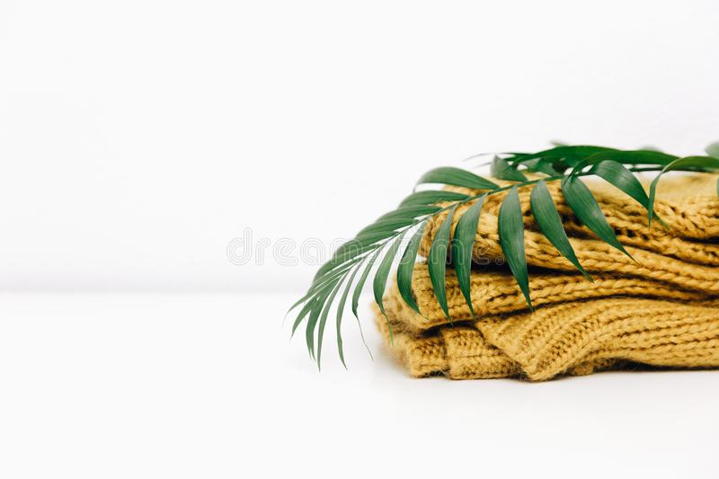 Knitted warm yellow sweater. With tropical green leaf stock photography