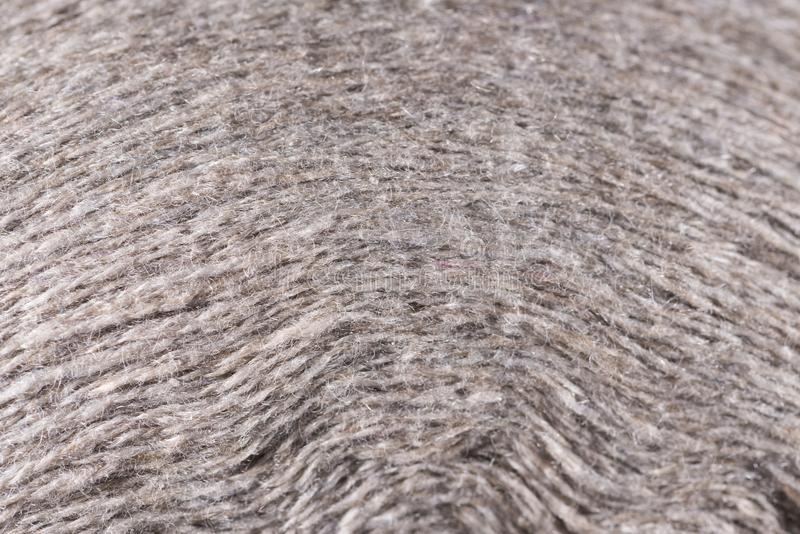 White wool thread spool macro close up stock photos