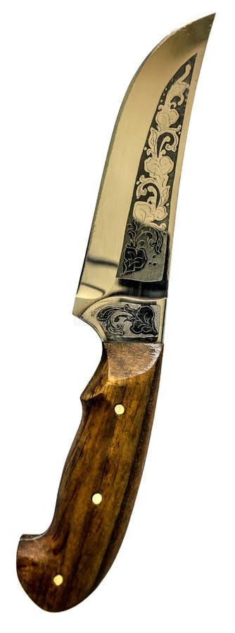 Kniv Isolerad vitbakgrund royaltyfria bilder
