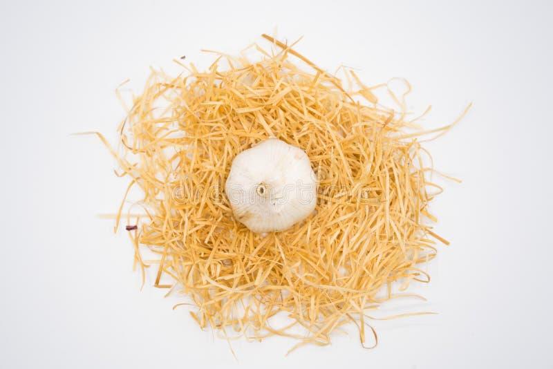 Knoblauch auf dem Nest mit lokalisiertem weißem Hintergrundschießen im Studio lizenzfreie stockfotografie