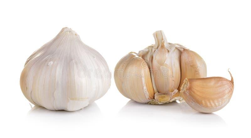 Knoblauch auf weißem Hintergrund lizenzfreies stockbild