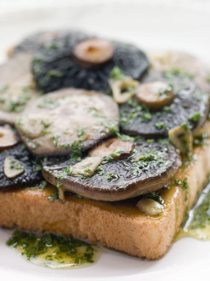 Knoblauch-Feld-Pilze auf Toast stockfotos
